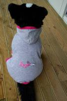 Dog Jogging suit